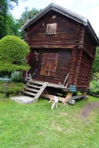 Zoie dog waiting for a guided tour to Munthes Hildasholm at Leksand, Dalarna.